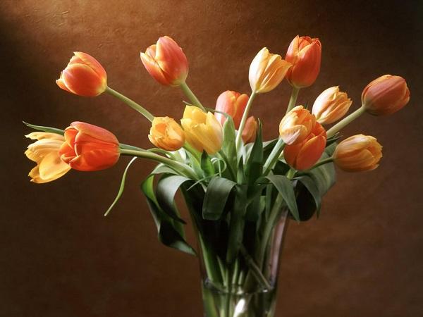 vazo çiçekler