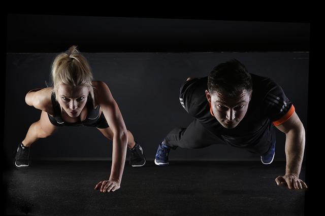 Fitness Aletleri Üreticisi Nasıl Çalışır?